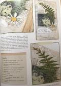 Page 3 sm cr